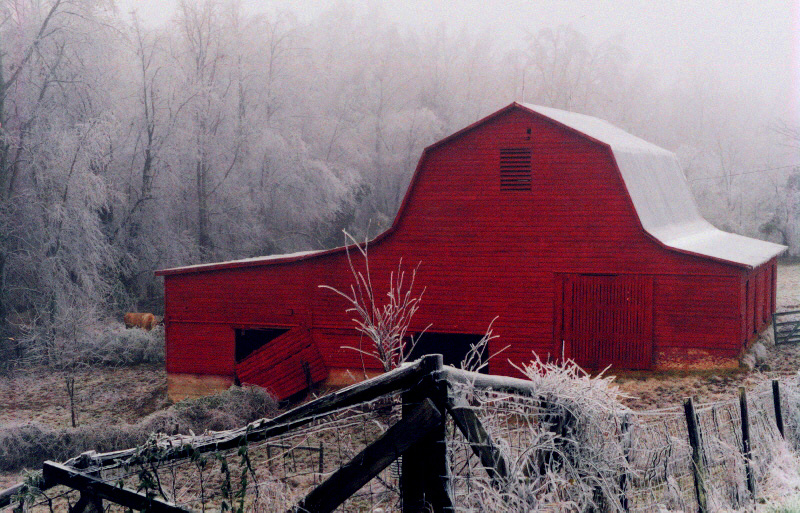 ice-storm-red-barn-final